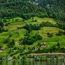Swiss Summer Countryside by anorth7