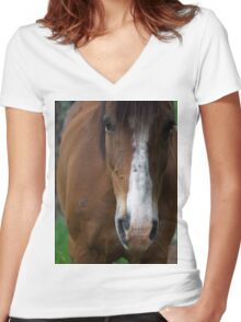 A Carriage Horse Women's Fitted V-Neck T-Shirt