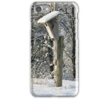 Unoccupied Blue bird houses are unhappy homes iPhone Case/Skin