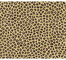 Babou, Serpentine! Leopard Print Photographic Print