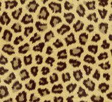 Babou, Serpentine! Leopard Print Sticker