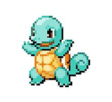 Pokemon - Squirtle Sprite Photographic Print