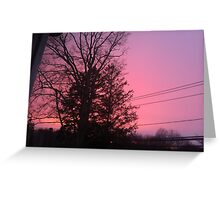 pink purple perfection Greeting Card