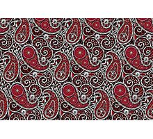 Pushie Paisley Pattern Chrome Photographic Print