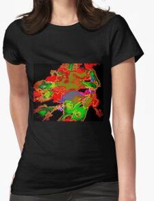 Atomic Kaleidoscope Womens Fitted T-Shirt