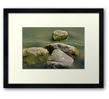 Algae and Rock Landscape Framed Print