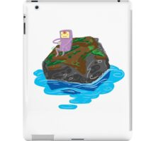 Riverside Cell iPad Case/Skin
