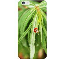 The Lonely Ladybug iPhone Case/Skin