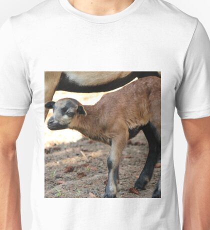 Cameroon Baby Sheep Unisex T-Shirt