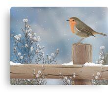 Robin on a Winter Day Metal Print