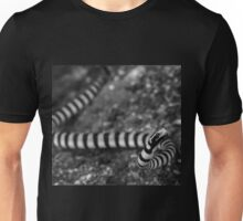 Banded Sea Krait in Black and White Unisex T-Shirt