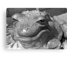 Bronze Frog Canvas Print
