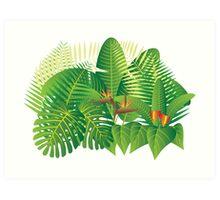 Tropical Jungle Plants Illustration Art Print