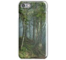 Cowell trail in the fog iPhone Case/Skin