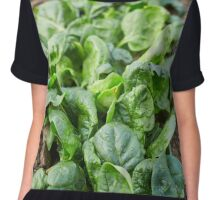 Spinach in the garden Chiffon Top