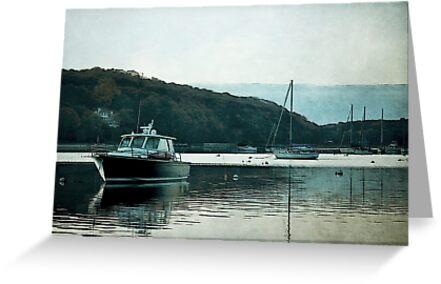 Coastal Harbor by tori yule
