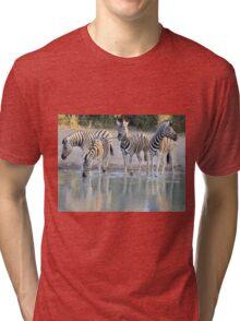 Zebra Reflection - Beautiful African Wildlife Tri-blend T-Shirt