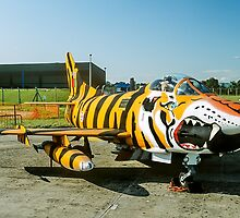 Dornier G.91R-3 5452 in Tiger Markings by Colin Smedley
