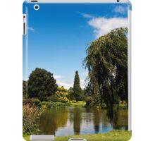 Across the Lake iPad Case/Skin