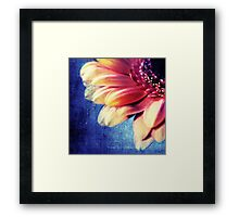 MACRO FLOWER Framed Print