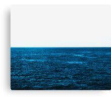 Divided Canvas Print