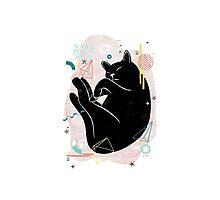 Sleeping Kitten illustration Photographic Print