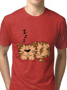 Animal Cartoon Cat Sleeping Tri-blend T-Shirt