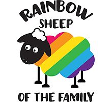Rainbow sheep of the family Photographic Print