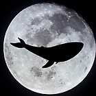 The Whale In The Moon by crabro