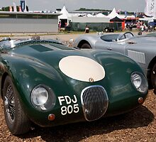 Jaguar Sport 1956 3442cc by Keith Larby