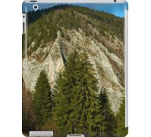Mountain pine forests iPad Case/Skin