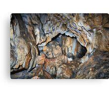 Cave interior Canvas Print