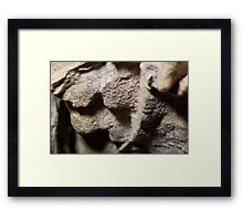 Cave wall closeup Framed Print