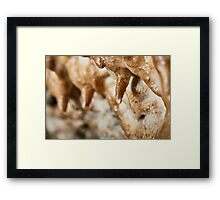 Cave curtains formations Framed Print