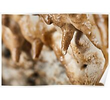 Cave curtains formations Poster