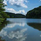 Summer Reflections by Lynn Gedeon