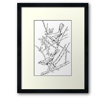 Twig Survey. Color Project.  Framed Print