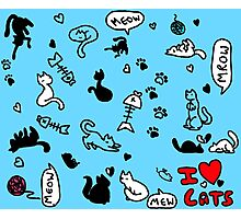 I Heart Cats Photographic Print