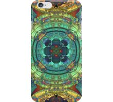 Color and Symmetry iPhone Case/Skin
