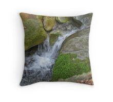 Swanson Creek Throw Pillow