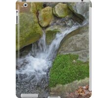Swanson Creek iPad Case/Skin