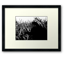 He Who Walks Behind the Rows Framed Print