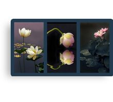 Lotus Blossom Triptych Canvas Print