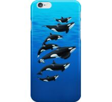 Florida Orcas iPhone Case/Skin