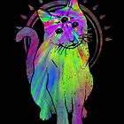Psychic Psychedelic Cat by Jonah Block