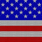 Metal Effect Stars and Stripes Cases by Steve Crompton
