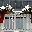 Christmas Window Boxes by Nancy Richard
