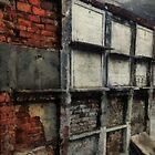 Bricks and Bones by RC deWinter