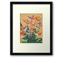 Bird Of Paradise Flower Bouquet Framed Print
