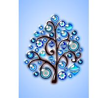 Blue Glass Ornaments Photographic Print